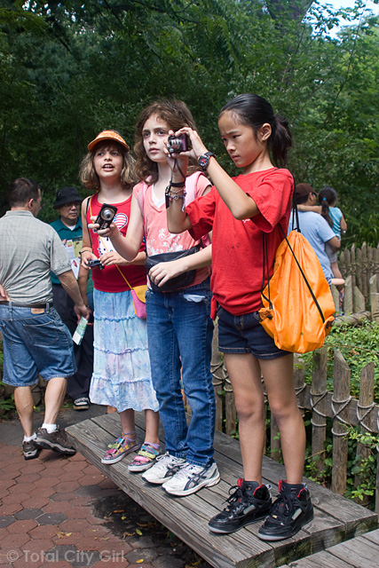 Bronx Zoo Field Trip - Photography Camp