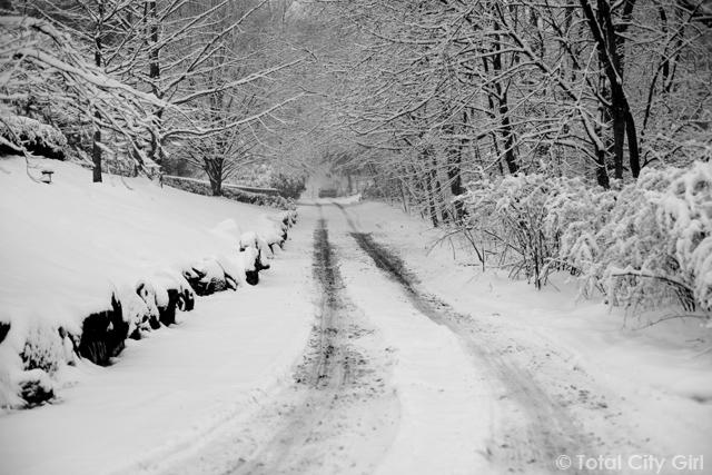 Snow In Riverdale, NY