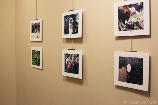 Photography Exhibit at Gallery 18